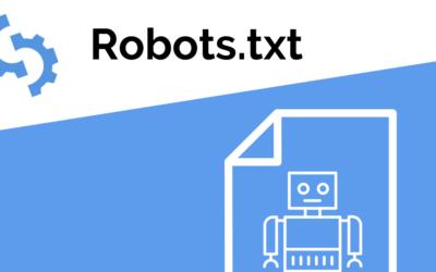Robots.txt best practice guide + examples